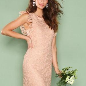 Nly Trend Flirt On Lace Dress Kotelomekko Peach
