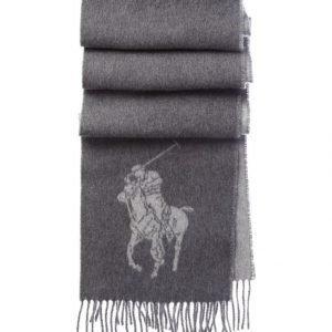 Polo Ralph Lauren Big Pony Jacquard Villahuivi