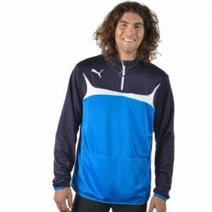 Puma 1/4 Zip Training Top Pusero Sininen