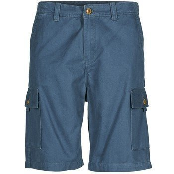 Quiksilver EVERYDAY CARGO SHORT bermuda shortsit
