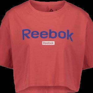 Reebok Linear Logo Tee Paita