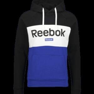 Reebok Te Big Logo Oth Hood Huppari