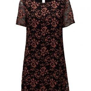 Saint Tropez Lace Dress W Short Sleeves lyhyt mekko