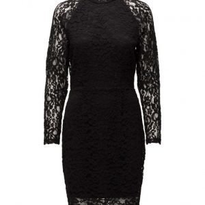 Selected Femme Sfvimil Ls Lace Dress mekko