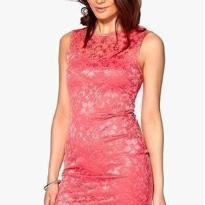 Sisters Point Icat-a Dress 520 Coral