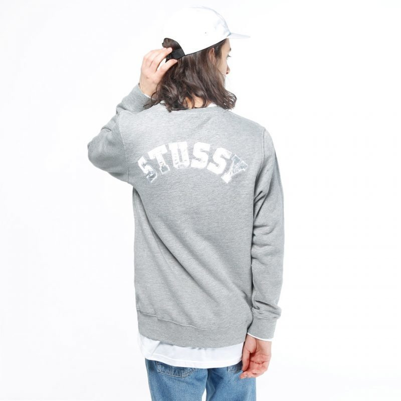 Stüssy Back Arc -college