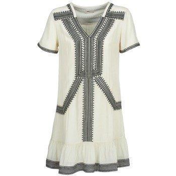 Stella Forest BRIVAELA lyhyt mekko