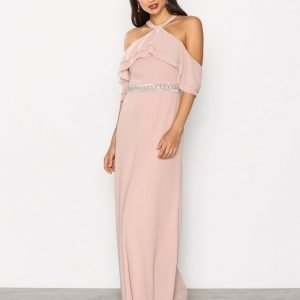 Tfnc Aylin Maxi Dress Maksimekko Mauve