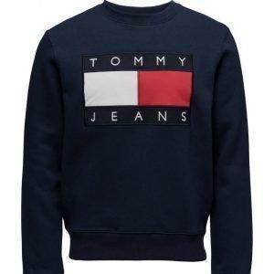 Tommy Jeans Tjm 90s Sweatshirt L/S 3 svetari