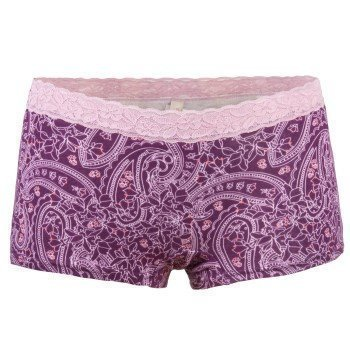Triumph Brief Molly Lace Short