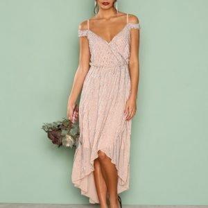 True Decadence Detail Wrap Dress Maksimekko Blush