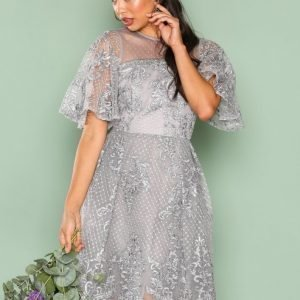 True Decadence Lace Short Sleeve Dress Skater Mekko Grey