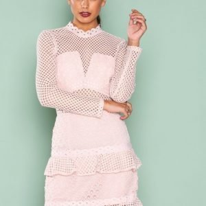 True Decadence Mesh Detail Dress Kotelomekko Pale Blush